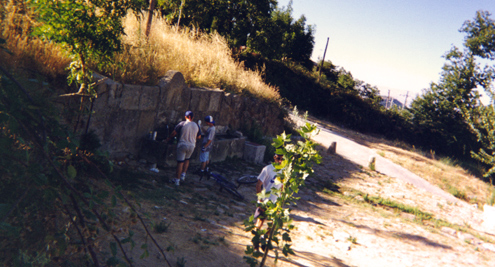 Iván y Miguel cogiendo agua en la fuente de El Real. Danny medio tapado por el árbol