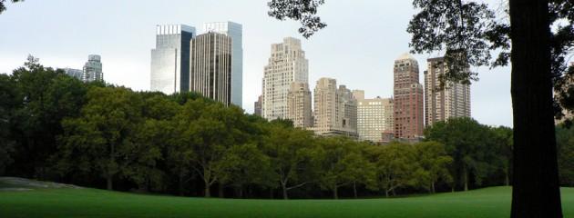 Visiones desde Central Park a primera hora de la mañana