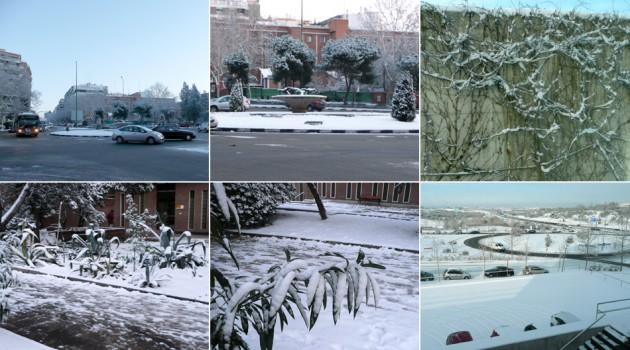 Postales de la nevada del 10 y 11 de enero de 2010