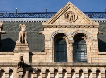 Detalle de la fachada del Museo de Historia Natural de Londres