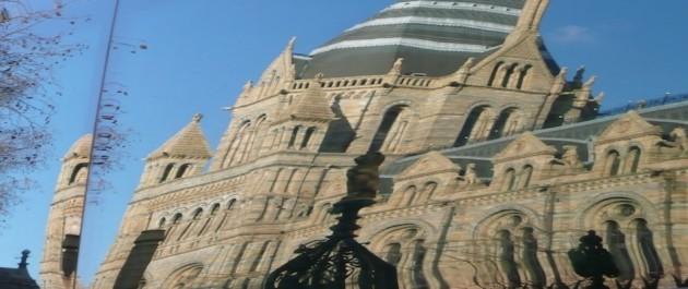 Natural History Museum of London, reflejado en un autobús
