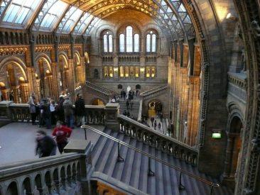 Detalle del interior del Museo de Historia Natural de Londres