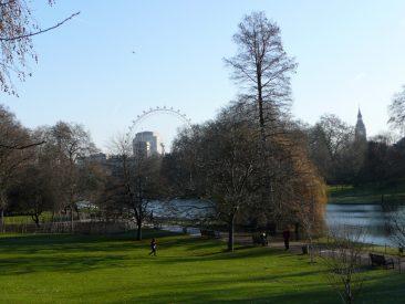 Parque St. James, con el Londo Eye y la torre del Parlamento al fondo