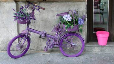 Bici Heladeria