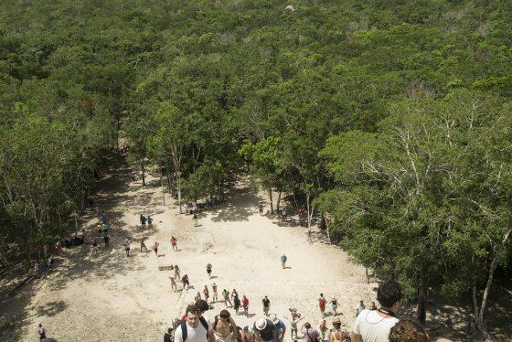 Cobá. Vista desde la mitad de la ascensión al Nohoch Mul
