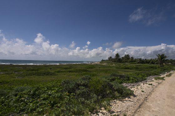 Costa caribeña de Tulum a Punta Allen