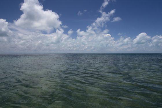 Sian Ka'an. Mar abierto protegido por el arrecife de coral