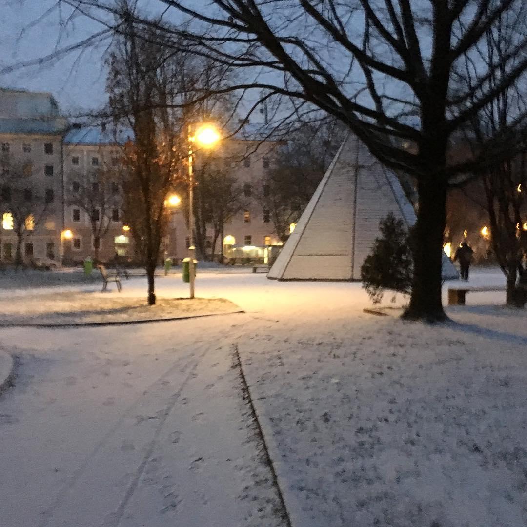Nieve gélida en Linz