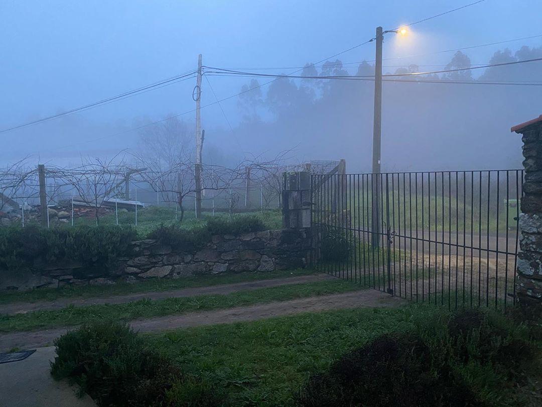 Niebla de NocheBuena